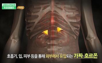 [아이쿱자연드림XEBS 치유캠페인] 예비맘 제2편 환경호르몬
