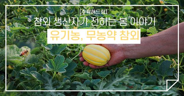 [수확해드림] 참외 생산자가 전하는 봄 이야기